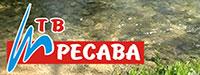 TВ Ресава